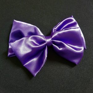 Ribbolutton Official Bow in Purple cover
